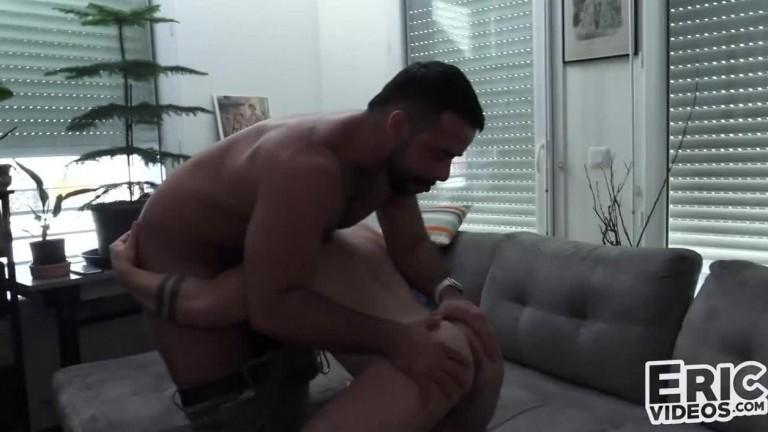 Ursos trepando no sofa