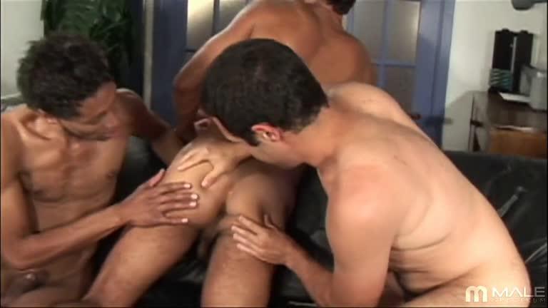 Thomas, Bernardo & Marick