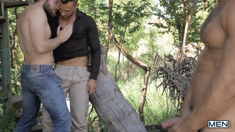 Colby na floresta
