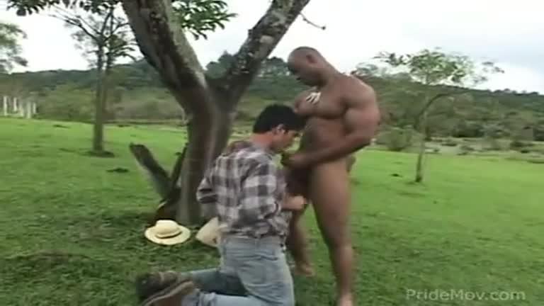 Negão super dotado  rascando um cu