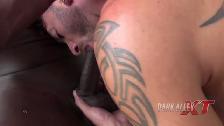 DarkAlleyXT - Paulão & AndyStar