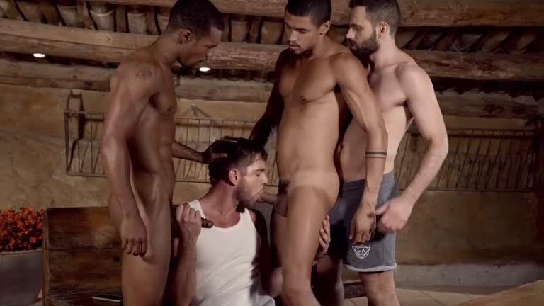 Zander Craze, Jacen Zhu, Wolf Rayet e Ibrahim Moreno